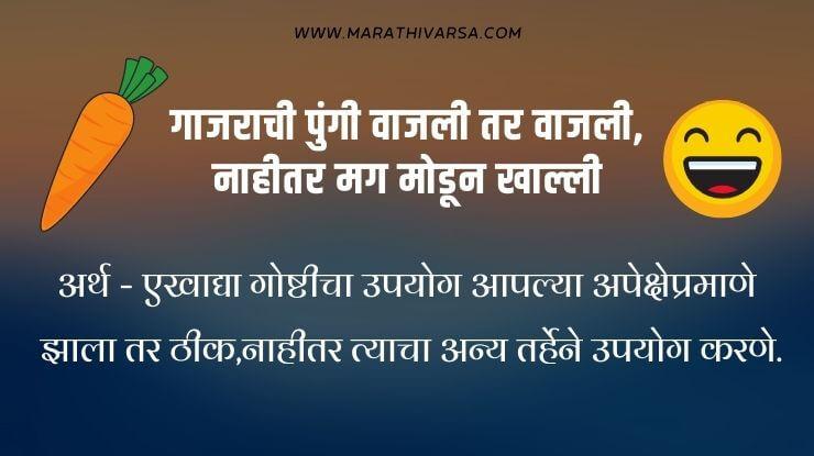 Marathi mhani collection