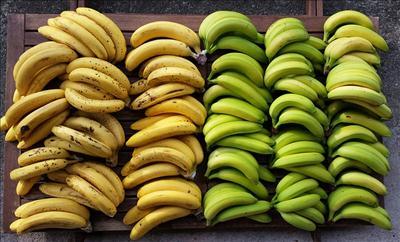Benefits of eating banana in marathi